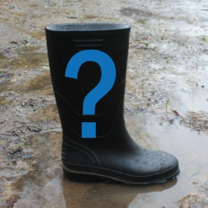 question mark wellie