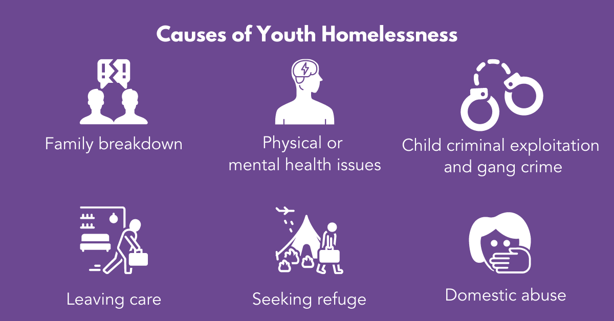 Causes of Youth Homelessness FV